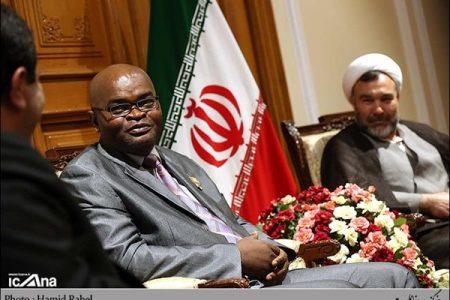 دیدار سبحانی نیا با رییس گروه دوستی پارلمانی ساحل عاج و ایران